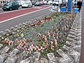 Weymouth - Impromptu Memorial - geograph.org.uk - 953327.jpg