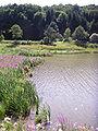 Wienerwaldsee3.jpg