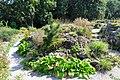 Wikipedia 13. Fotoworkshop Botanischer Garten Erlangen 2013 by-RaBoe 002.jpg