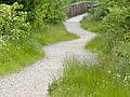 Winding path (14354572446).jpg