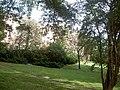 Winkley Square - central gardens - geograph.org.uk - 557117.jpg