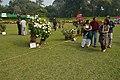 Winter Flower Show - Agri-Horticultural Society of India - Alipore - Kolkata 2013-01-05 2132.JPG
