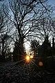 Winter Morning (38993333771).jpg