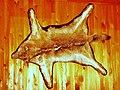 Wolf fur - panoramio.jpg