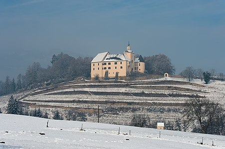 Castle Thuern with vineyard at Thuern, Wolfsberg, Carinthia, Austria