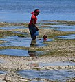 Woman bathing a child as viewed from Nyali Beach next to Mombasa Beach Hotel during low tide and still conditions in Mombasa, Kenya 2 (edited).jpg
