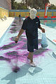 Worker at the al-Amana swimming pool put purple dye into a wading pool in preparation for the grand re-opening Aug. 7, 2008 080807-A-YE931-018.jpg