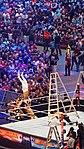 WrestleMania 32 2016-04-03 18-16-58 ILCE-6000 8839 DxO (27226685794).jpg