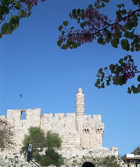 برج القلعة.