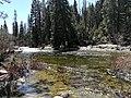 Yosemite Nationalpark South Fork Merced River IMG 20180412 115407.jpg