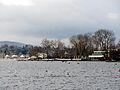 Zürichhorn 2011-12-19 12-35-16 (SX230).JPG