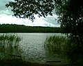 Z dużym prawdopodobieństwem jest to Jezioro Lynelis - panoramio.jpg
