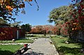 Zahrada a domek Maria Reiche - panoramio.jpg