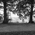 Zicht vanaf de Corverslaan op 's-Graveland - 's-Graveland - 20084221 - RCE.jpg