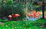 Zoo de Lisboa by Juntas 7.jpg