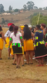 Zulu traditional wedding.png