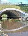 Zwolenka w zwoleniu most na perzyny.jpg