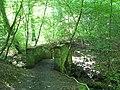 (Another) footbridge over Halgut Burn - geograph.org.uk - 843627.jpg
