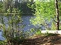 Берестовое озеро. Июнь, 2011 г. - panoramio.jpg
