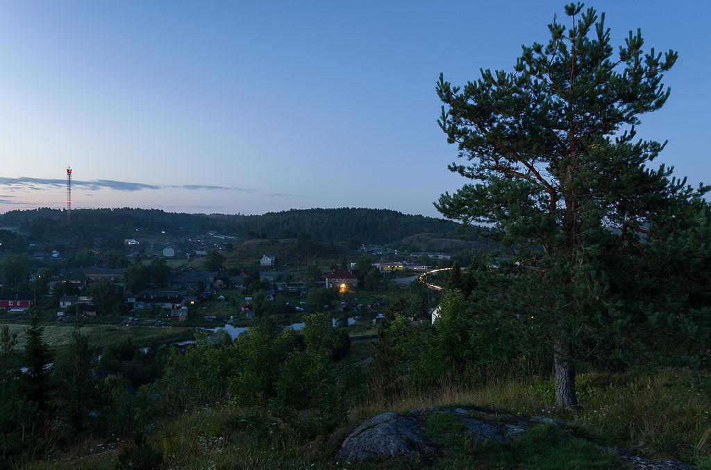Вид на поселок Куркиёки IMGP9512.jpg