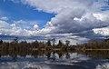 Вид на пруд и церковь. Усадьба Сенницы в Озерском районе Московской области.jpg