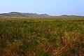 Горы с западной стороны - panoramio (1).jpg