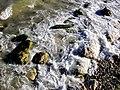 Заповідний парк Карадаг 09.jpg