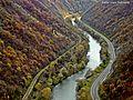 Ибар у Долини јоргована.jpg