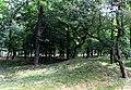 Курганний могильник «Болдині гори» 02.JPG
