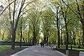 Міський парк IMG 5451.jpg