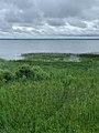 Озеро Плещеево (2020).jpg