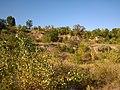 Октябрьский гранитный карьер - panoramio (21).jpg