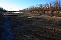 Река Урал поздней осенью - panoramio (1).jpg