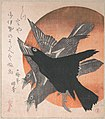 「三ひらの内」日輪に烏-Three Crows against the Rising Sun, from the series Three Sheets (Mihira no uchi) MET DP139051.jpg
