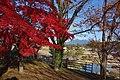 つくば市小田城趾から筑波山 - panoramio.jpg
