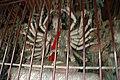 中國山西平遙古蹟786.jpg