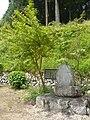 吉野町千股にて 万葉歌碑 2011.6.06 - panoramio.jpg