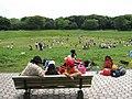 夢の島公園 - panoramio - Yoshio Kohara.jpg
