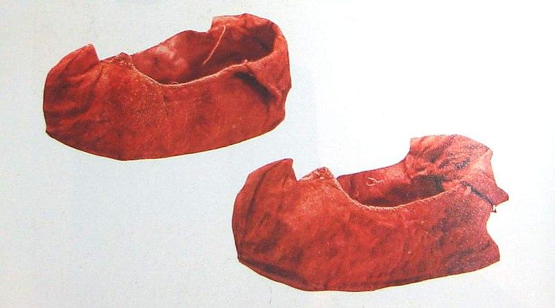 File:尖頭弓鞋.jpg