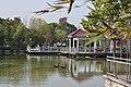 梦湖公园 - panoramio (2).jpg