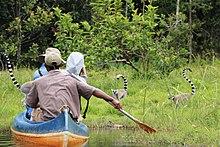 Tourism In Madagascar Wikipedia