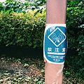 蚊注意 2016 板橋区 (29496186821).jpg