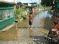 1246Effects (floods) of Typhoon Vamco (2020) in Calumpit, Bulacan 53.jpg