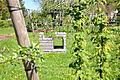 14-04-16 Zülpich Holzbank 02.jpg