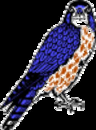 15th Infantry Brigade (United Kingdom) - Merlin Insignia of 15 (North East) Brigade
