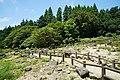 170811 Rokko Alpine Botanical Garden Kobe Japan14n.jpg