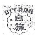 1951-PaiMeiPaiCitron.jpeg