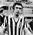 1972–73 Juventus FC - Maggiora (cropped).jpg