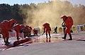 2004년 10월 22일 충청남도 천안시 중앙소방학교 제17회 전국 소방기술 경연대회 DSC 0042.JPG