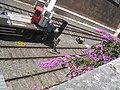 2008-07-22-vatican-railway-station-freight-sidings-and-construction-crane.jpg